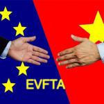 EVFTA Ký hiệp định thương mại tự do với Việt Nam - Có hiệu lực khi nào