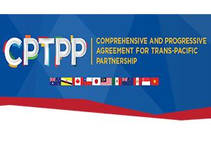 Hiệp định đối tác toàn diện và tiến bộ xuyên Thái Bình Dương